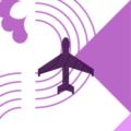 Icon International2