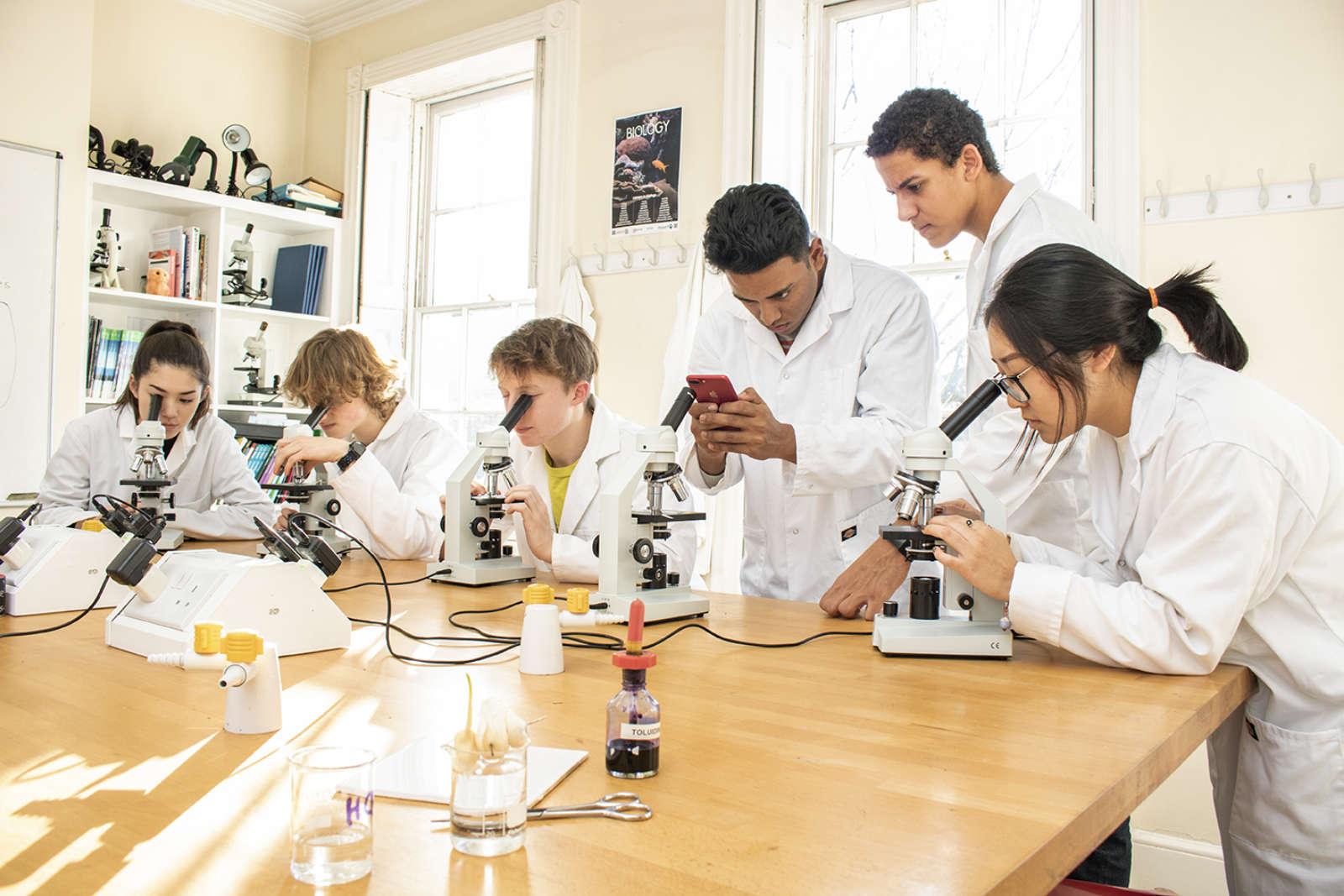 Biology 8687