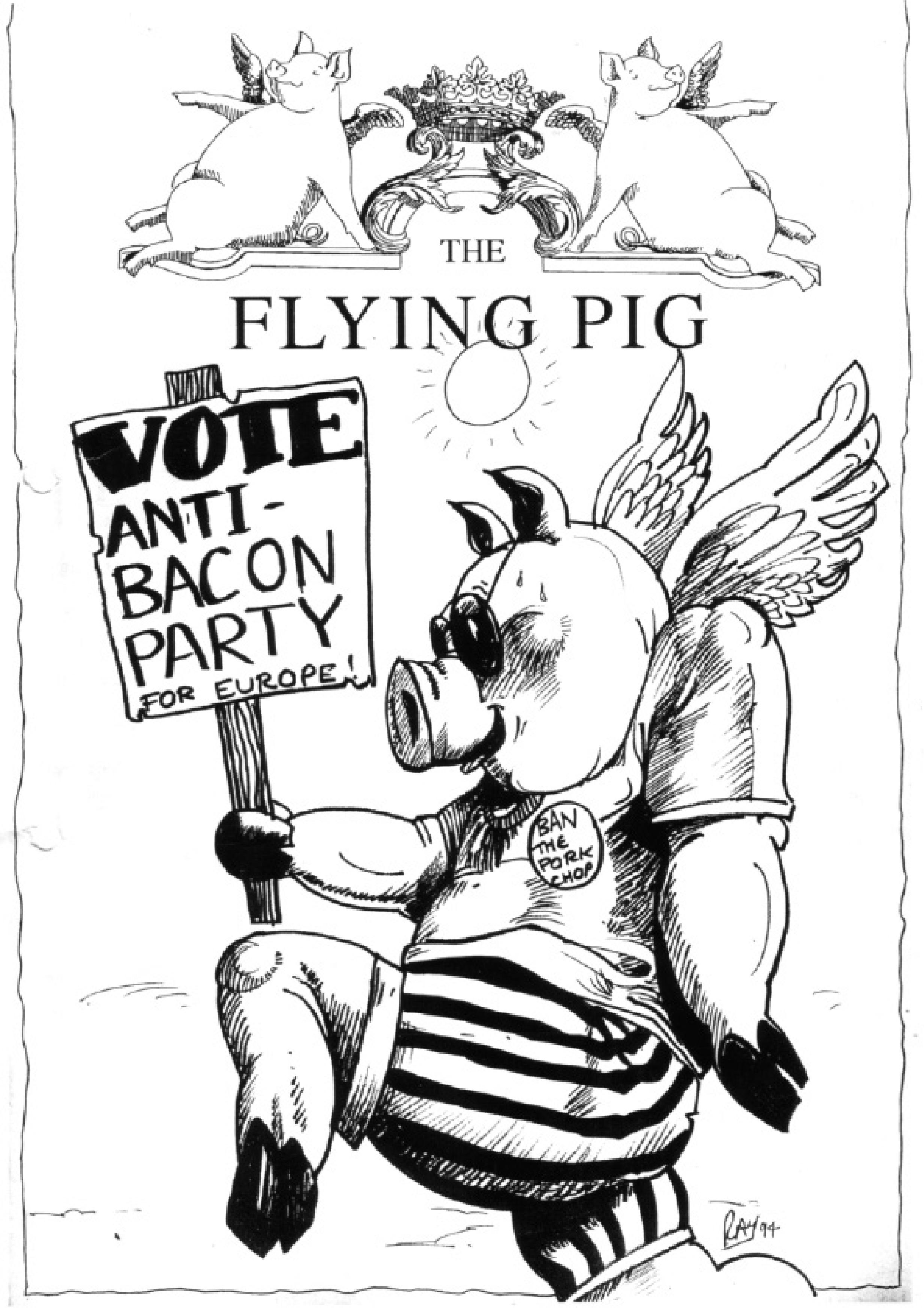 Flyimg Pig